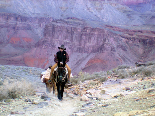 Popular Grand Canyon Hiking Trails